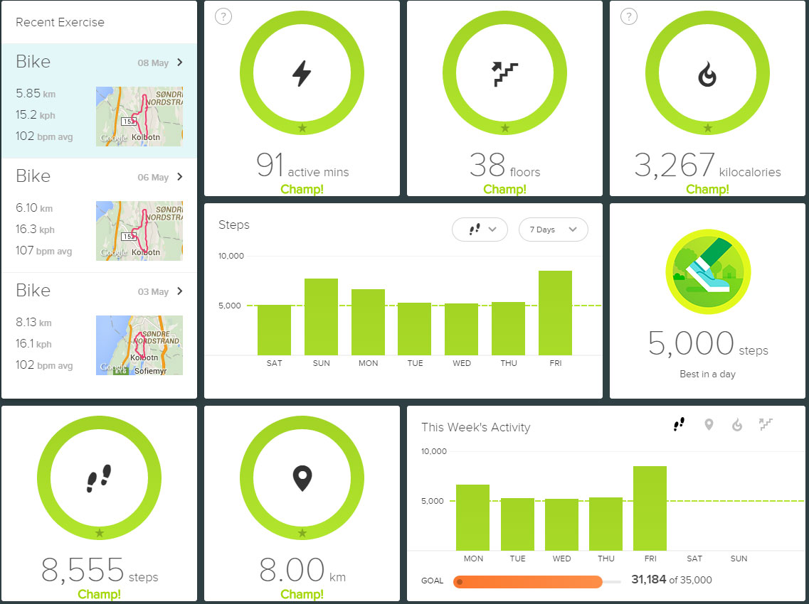 The Fitbit Dashboard