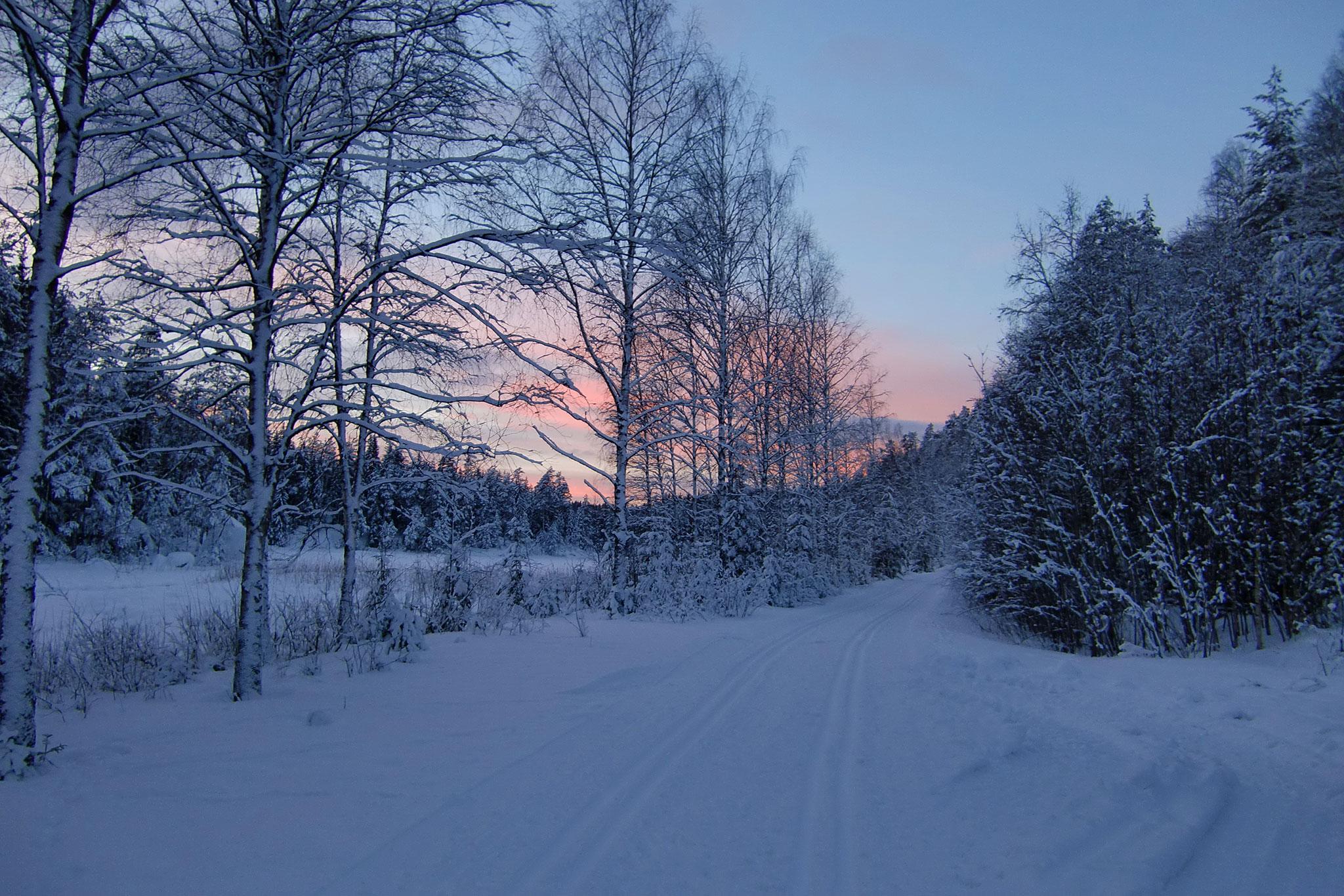 Skiing in local habitat