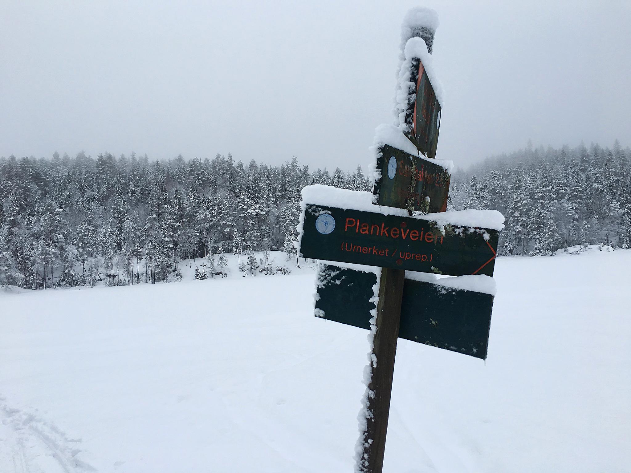 Signpost on a lake
