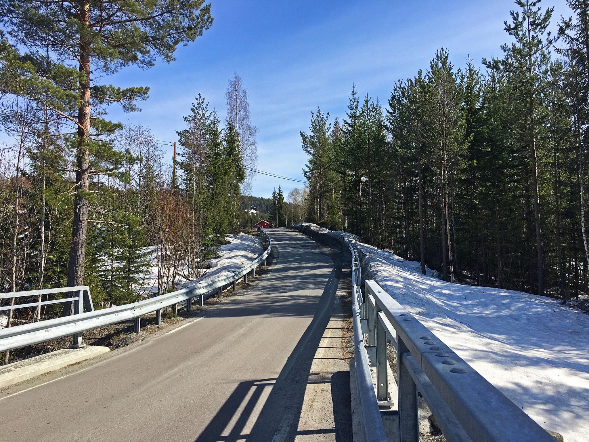 Lurdalen road
