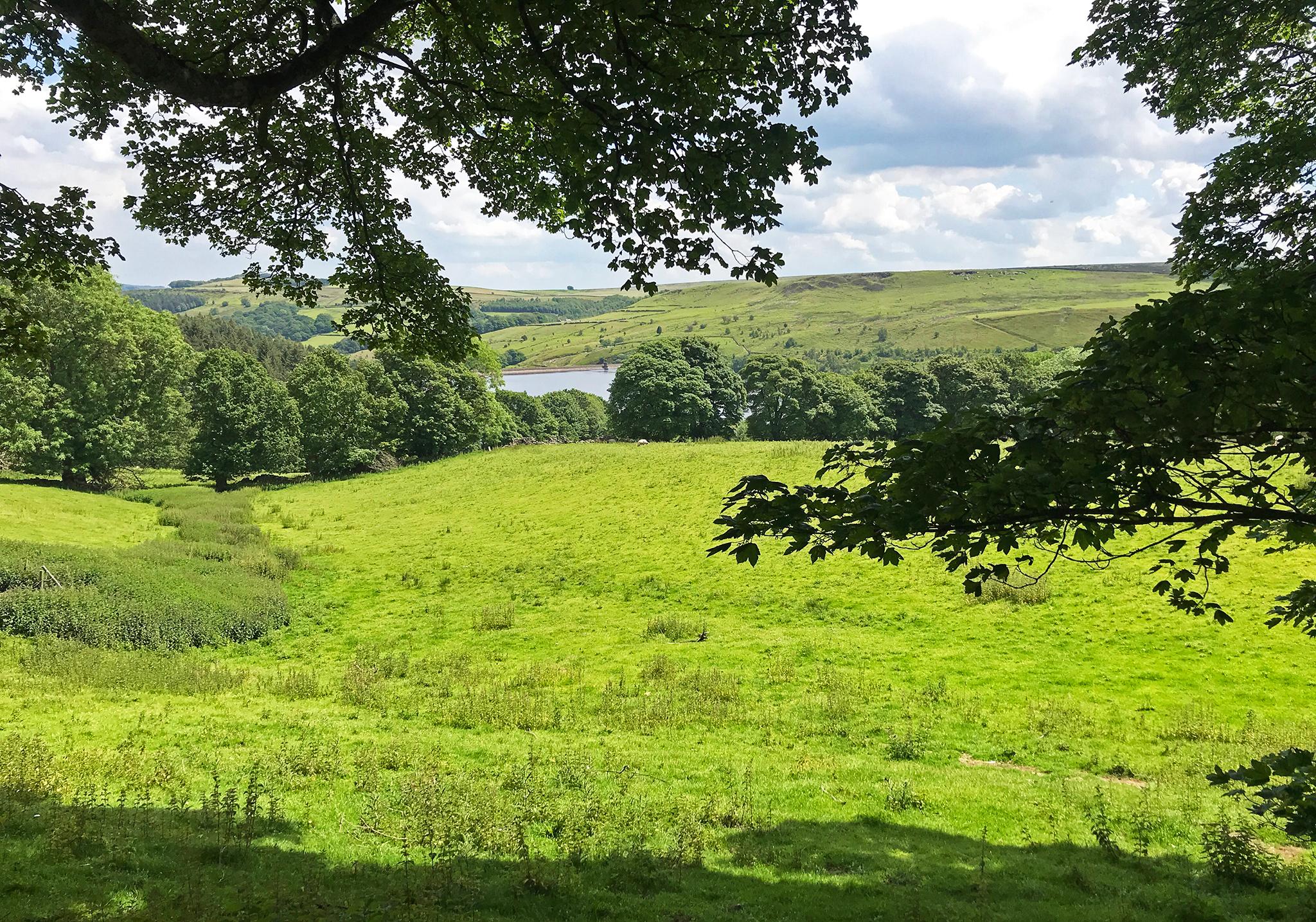 The Strines reservoir