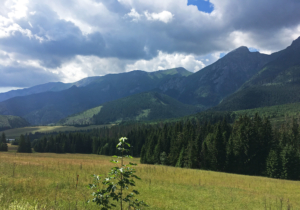Roadside view of Tatra Mountains in Slovakia