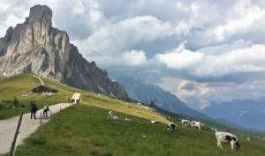 The Dolomites 2017