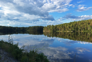 In Sweden