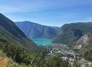 Øvre Årdal