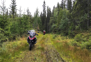 Offroad in the woods and hills