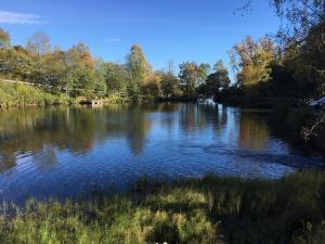 Autumn lake (October 2017)