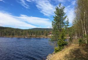 Along eastern lake Bjone
