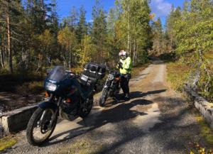 In Lurdalen late September