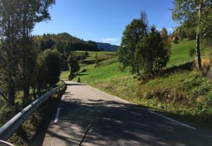 Towards Rødberg (Fall 2016)
